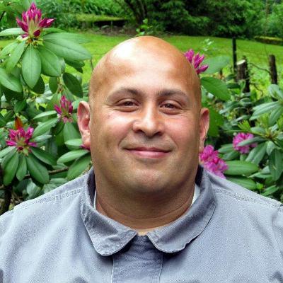 Mohamed Elashmawy, EDV